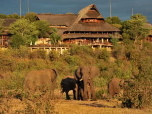 Victoria Falls Safari Elephant Front Lodge