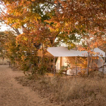 Vintage Camp Hwange Accommodation