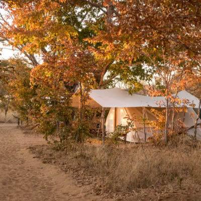 Vintage Camp Hwange Accommodation
