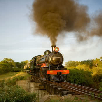 Livingstone Steam Train Trip