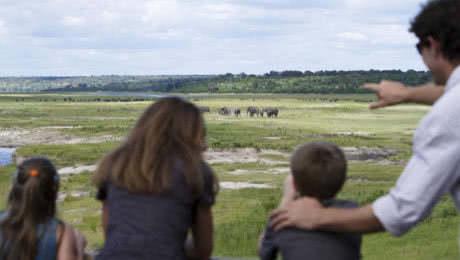 Travel To Botswana With Children