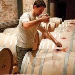 Exclusive Stellenbosch Wine Tour Tasting