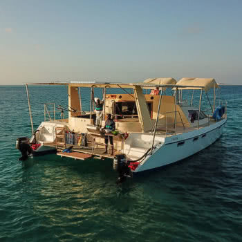 Catsonova Boat