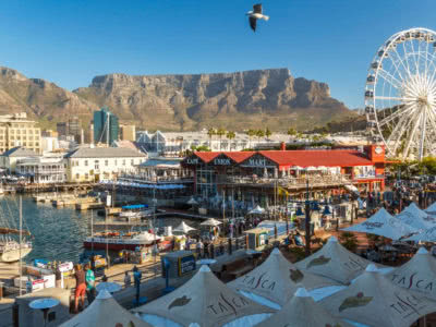 Curated Cape Town City Tour Mountain