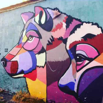 Township Tour & Street Art Walking Tour Husky