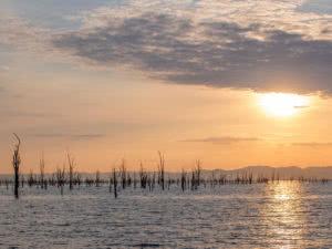 Changa Lake