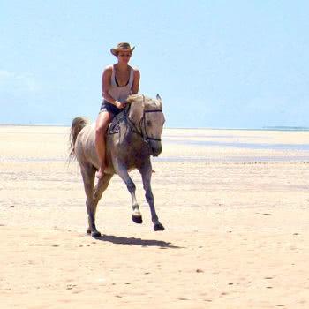 Horse Safaris Jump